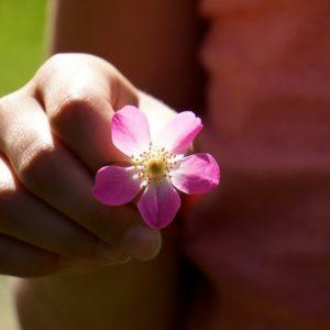 gentilezza ed equanimità