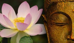 Loto-e-Buddha